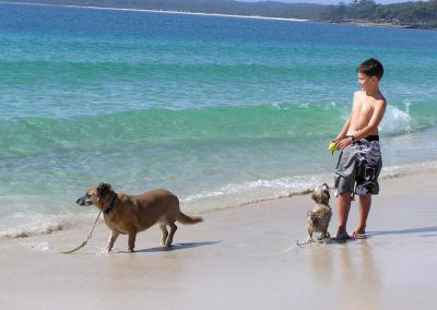 Nelsons Beach JB - Dog Friendly